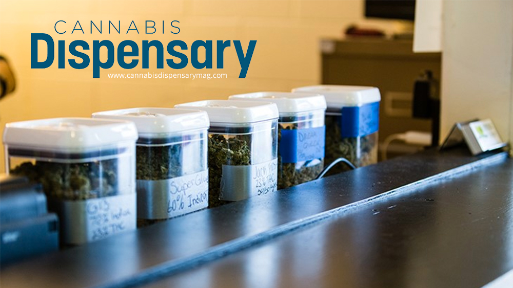 cannabis dispensary magazine