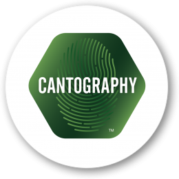 Cantography