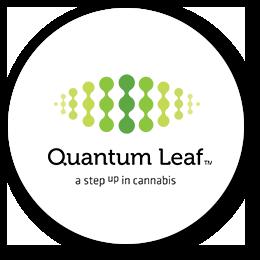 logo-quantum-leaf
